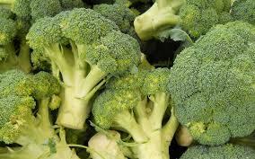 Brocoli – Brassica oleracea