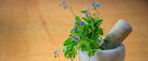Pourquoi choisir la naturopathie ?