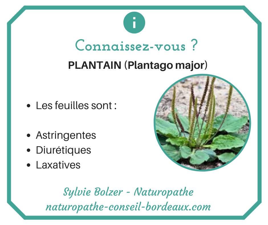 Naturopathie Perigueux